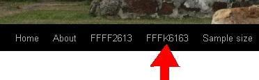 clickfk6163
